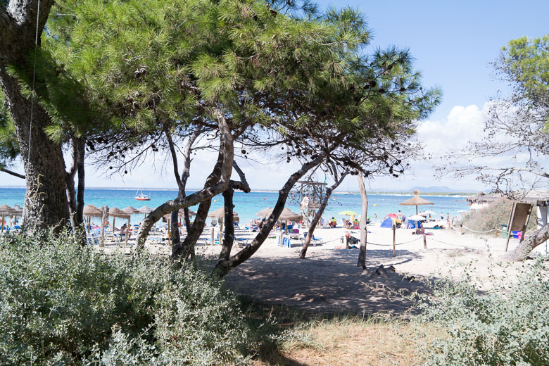 playa-de-marques-mallorca-momente-blog-1961